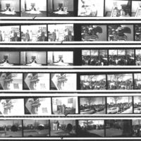 b4f45a - Chris McNair proof sheet 1 of 1966 photos.jpg
